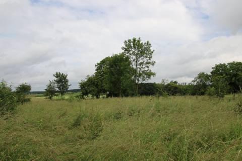 Sale Building land Dammartin-Marpain